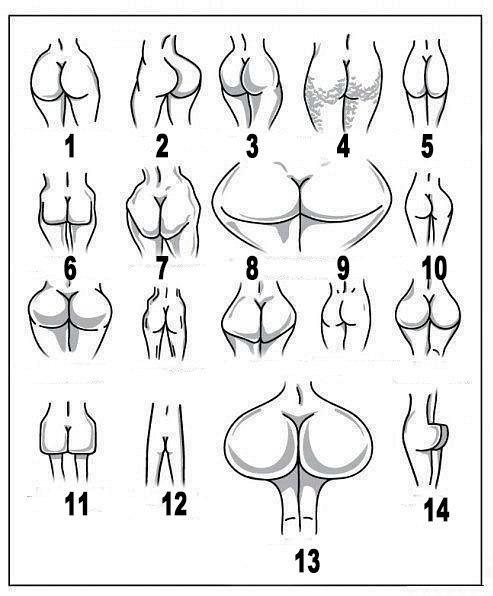 форма задниц